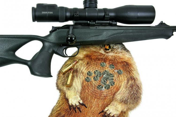 Swarovski Mit Entfernungsmesser : Swarovski ds p l titanium gunworks