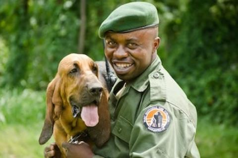 Symbolfoto: Virunga-Ranger (Quelle: Virunga National Park)